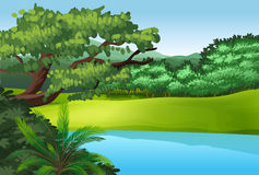 A beautiful landscape with a pond Stock Image