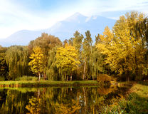 Beautiful landscape with a pond and yellow trees against the bac Stock Photography