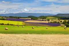 Beautiful landscape of Provence Stock Photos