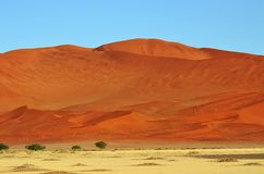 Sossusvlei, Namib Naukluft National Park, Namibia. Beautiful landscape with red dunes at sunrise, Sossusvlei, Namib Naukluft National Park, Namibia, Africa Royalty Free Stock Images