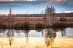 Beautiful landscape with reflections on water during sunset ar river bank Stock Image
