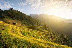 Beautiful landscape rice fields on terraced of Mu Cang Chai