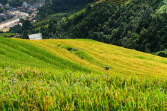 Beautiful landscape rice fields on terraced of Mu Cang Chai Stock Photo