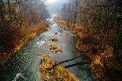 Beautiful landscape with river Cerna Stock Photos