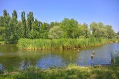 Beautiful landscape. royalty free stock photos