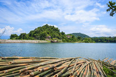 Beautiful landscape of river and group bamboo Royalty Free Stock Images