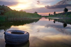 Beautiful landscape with the river, reeds and old tires. Stock Image