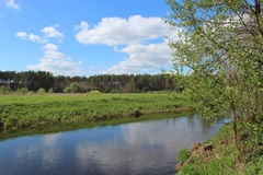 Beautiful landscape with river Stock Images