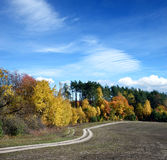 Beautiful landscape with road, winding around autumn forest on c Royalty Free Stock Photos