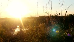Beautiful landscape from the rock, a forest and a river. Reflected in the water the sun. sunset time with lens flare. Effect. 3840x2160. 4k stock video