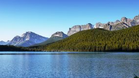 Canadian Rocky Mountains, Lake Forest, Banff NP. Beautiful summer landscape scene - Canadian Rocky Mountains, forest and Waterfowl Lake. Banff National Park royalty free stock photo