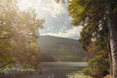 A beautiful landscape scene at the lake great arber. Bavaria Stock Photos