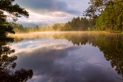 Beautiful landscape scene with pine forest reflected in calm lake hazy water in the morning royalty free stock images