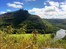 Beautiful landscape scenery in Hawaii with mountain and river landscape Stock Photography