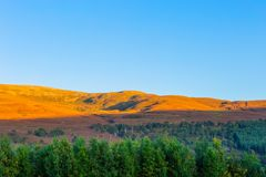 Beautiful landscape scenery of hills and forest at Cargorms National Park stock images