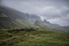 Scotland. Beautiful landscape in Scotland , United Kingdom Stock Photography