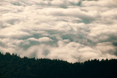 Beautiful landscape with a sea of clouds and the forest. Landscape with a sea of clouds above a valley and the forest covering a mountain ridge Stock Image