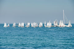 Beautiful landscape of the sea with many sails on the horizon Royalty Free Stock Image
