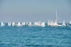 Beautiful landscape of the sea with many sails on the horizon Stock Image