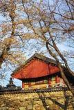 Beautiful landscape at Seoraksan Korea. Stock Photography
