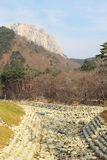 Beautiful landscape at Seoraksan Korea. Royalty Free Stock Photography