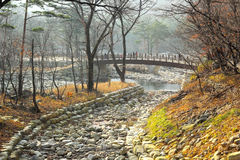 Beautiful landscape at Seoraksan Korea. Royalty Free Stock Photo
