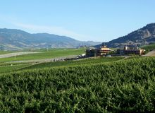 British Columbia Vineyard Vista Oliver Canada Royalty Free Stock Images