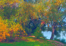 Beautiful landscape showing autumn forest beside river shore. Beautiful landscape showing forest beside river shore on colorful autumn day Stock Photography