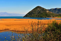 Beautiful landscape of Skadar lake in Montenegro Royalty Free Stock Photography