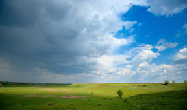 Beautiful landscape of sky, trees and meadows Stock Image