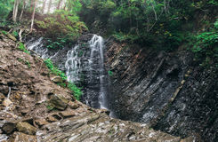 Beautiful landscape with small waterfalls in dense forest Stock Photo