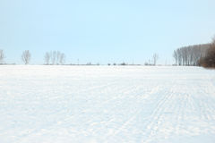 Beautiful landscape snow area with trees Stock Photography