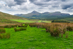 Beautiful landscape in Snowdonia, Wales Royalty Free Stock Images