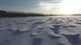 Beautiful landscape with snowy relief surface and strong wind. On the lake stock footage