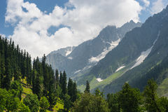 Beautiful landscape of Sonamarg in summer, Srinagar, Jammu Kashm. Ir, India, Asia royalty free stock photos