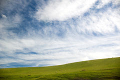 Beautiful landscape in South Island, New Zealand Royalty Free Stock Images