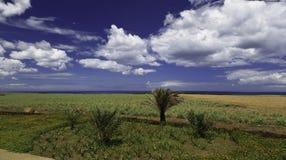 Mauritius landscape Royalty Free Stock Image