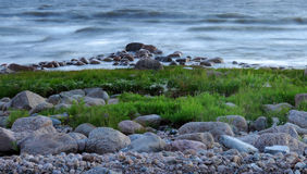 Beautiful landscape - stones, grass and sea waves Stock Photo