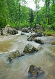 Beautiful landscape with stormy mountain creek Stock Photography
