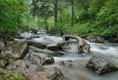 Beautiful landscape with stormy river Royalty Free Stock Photo