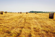 Beautiful landscape with straw bales Stock Photography