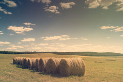 Beautiful landscape with straw bales in end of summer Stock Images