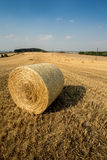 Beautiful landscape with straw bales in harvested fields Stock Photos