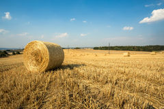 Beautiful landscape with straw bales in harvested fields Royalty Free Stock Photography