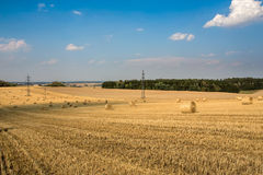 Beautiful landscape with straw bales in harvested fields Stock Images