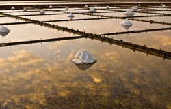 Beautiful landscape of a summer with a salt farm Royalty Free Stock Photo