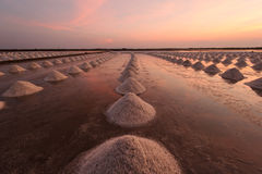 Beautiful landscape of a summer with a salt farm in T้hailand. Stock Images