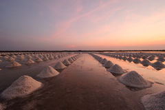 Beautiful landscape of a summer with a salt farm in T้hailand. Royalty Free Stock Photography