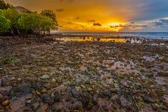 Beautiful landscape of sunset royalty free stock image