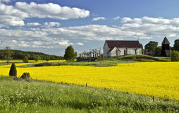 Beautiful landscape in Sweden. With rape field Royalty Free Stock Photo